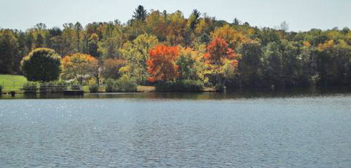 Fall Leaves Lake