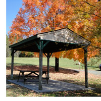 Fall Leaves Picnic