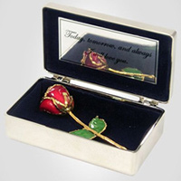 Anniverary Rose Personalized Romantic Gifts