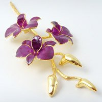 Assorted Romantic Gifts Glazed Orchids